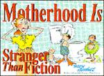 Motherhood Is Stranger Than Fiction, Mary Chambers, 0830816038