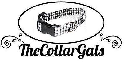 TheCollarGals