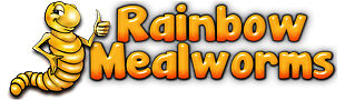 Rainbow Mealworms