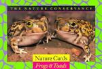 Natural Conservation of Frogs, Nature Conservancy Staff, 0395643511