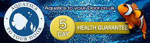 Aquatics To Your Door