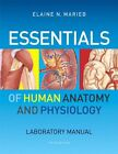 Essentials of Human Anatomy and Physiology Laboratory Manual by Elaine N. Marieb (2011, Paperback)