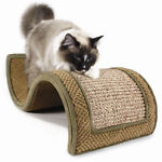 Used Cat Scratcher Guide