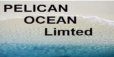 PELICAN OCEAN LTd t/a PELICAN474