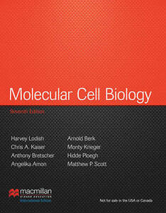 Molecular Cell Biology: International Edition by Arnold Berk, Monty Krieger,...