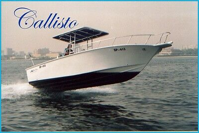 Callisto Accessories
