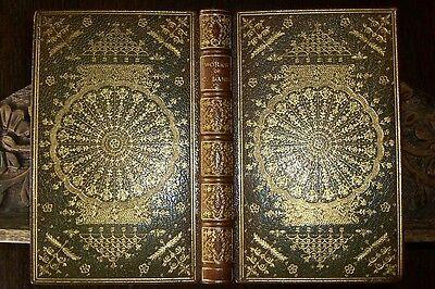 treerain books