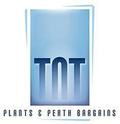 TnT Plants&PerthBargains
