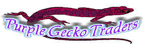 purplegeckotraders