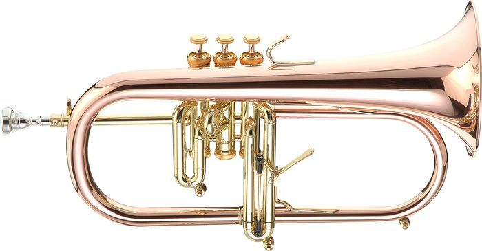 Flügelhorn, Waldhorn & Co: Was die Instrumente der Hörnerfamilie auszeichnet