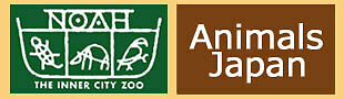 Animals Japan