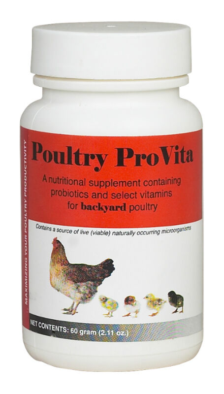 The Complete Guide to Buying Poultry Supplies