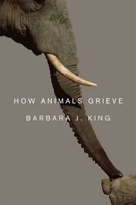 How Animals Grieve, Barbara King