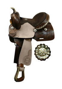 Conchos Buying Guide