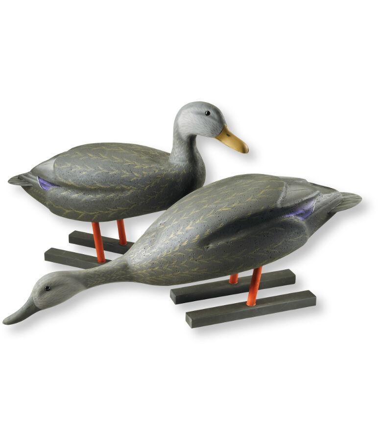 How to Buy Hunting Decoys