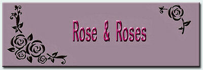 Rose And Roses