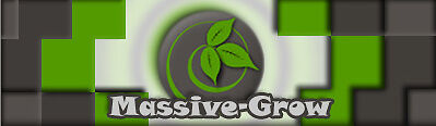 Massive-Grow Growshop Bochum