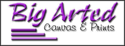 Big Arted Canvas and Prints