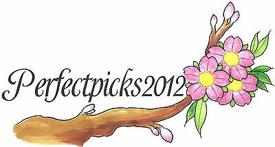 perfectpicks2012