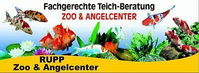 zoo-angelcenter*1