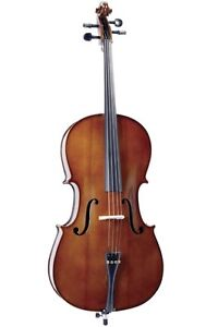 The Complete Cello Sizing Guide