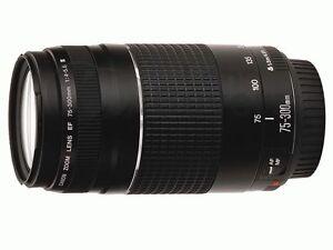 Canon EF 75-300 mm F/4-5.6 III Lens