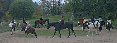 Pferdeinsel