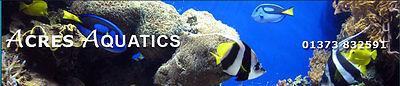 Acres Aquatics