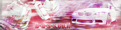 B-a-s-s-2007