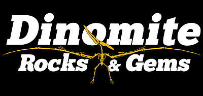 Dinomite Rocks and Gems