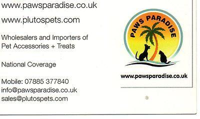 pawsparadise