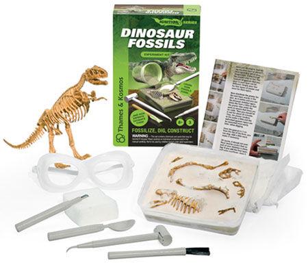 Wie man Dinosaurier-Experimentierkästen bei eBay findet