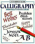 An Usborne Guide Calligraphy: From Beginner to Expert (Usborne Practical Guides