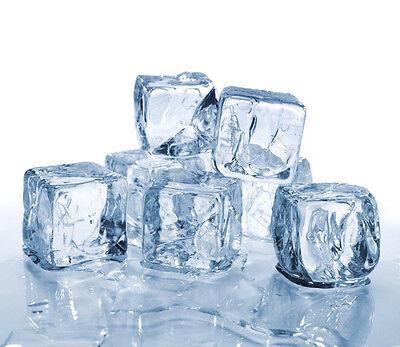 Studio-Ice Sales