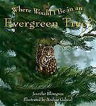 Where-Would-I-Be-in-an-Evergreen-Tree-by-Jennifer-Blomgren-Paperback