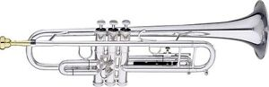 How to Buy a Trumpet on eBay