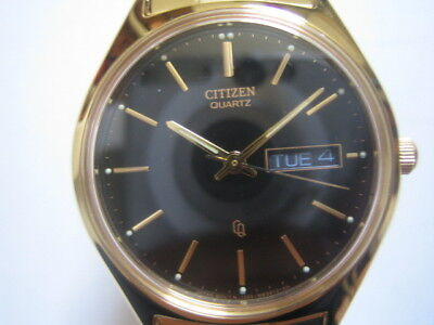 Citizen Men's Watch Quartz Gold Tone Expansion Band