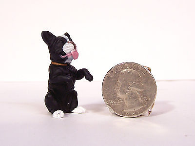 New Small Black White Boston Terrier Dog 1.25