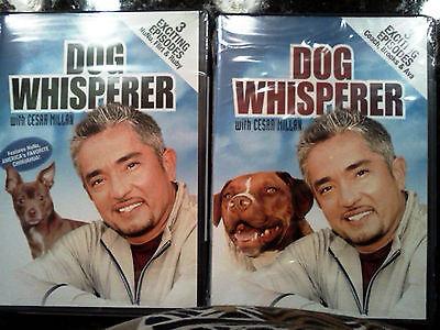 Dog Whisperer, Cesar Millan:Volume 2 & Volume 1 w/NuNu (DVD, 2006)