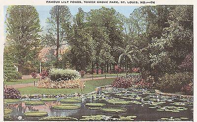 Famous Lily Ponds  Tower Grove Park  St  Louis  Mo   Linen Postcard