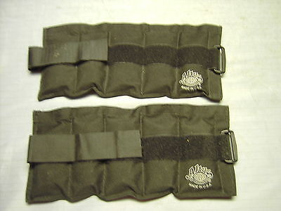Pair of Altus Ankle or Wrist weights 2.54  pounds each