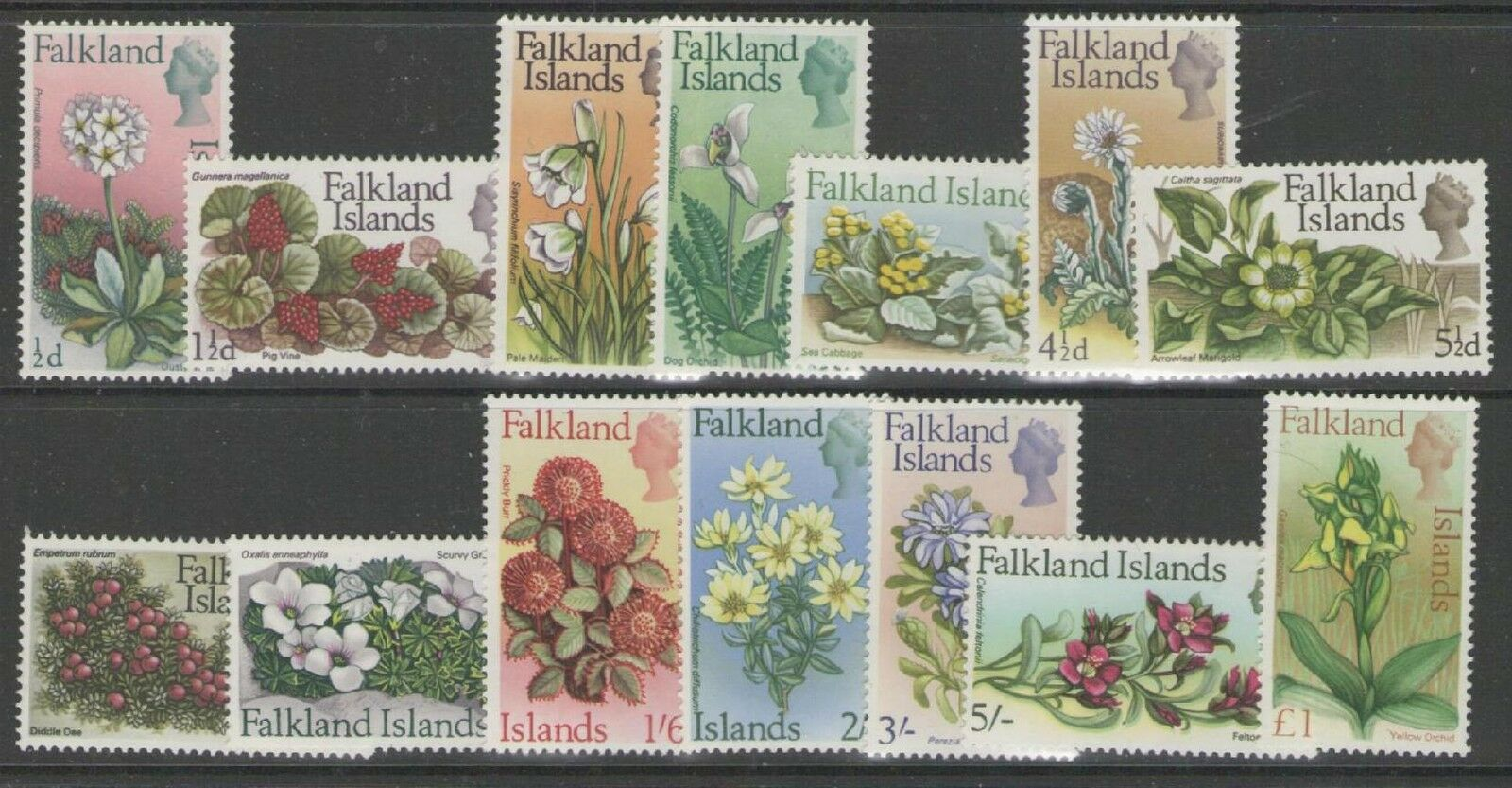 FALKLAND ISLANDS SG232/45 1968 FLOWERS MNH
