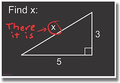 - Find x - There It Is! - NEW Funny Humor Math Algebra Joke POSTER
