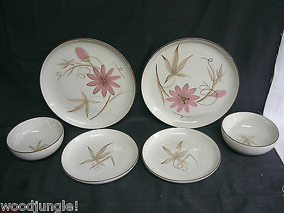 6 Mid Century modern WINFIELD PASSION FLOWER pcs DINNER PLATES SALAD CEREAL BOWL
