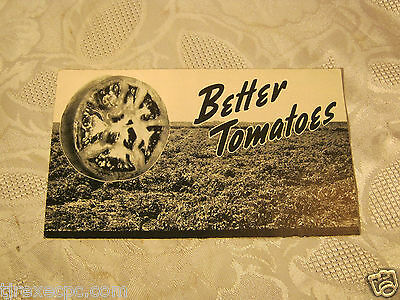 Better Tomatoes American Potash Institute Agriculture Farming Adv Pamphlet
