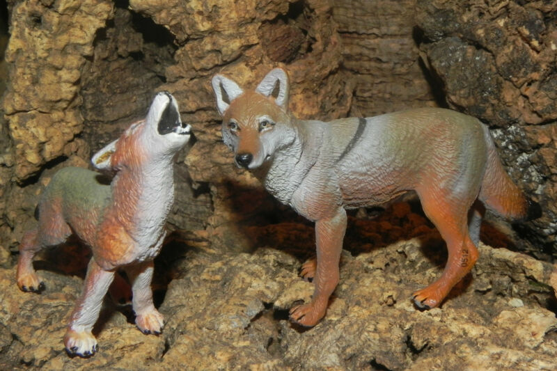 Safari Coyote Wild Life Animal Figurines Nativity Village Figurine Pesebre