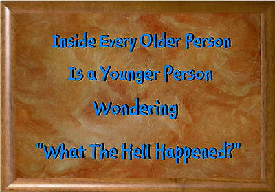 MAGNET Humor Fridge WHAT THE HELL HAPPENED Older Person Younger Person (Personalized Refrigerator Magnets)