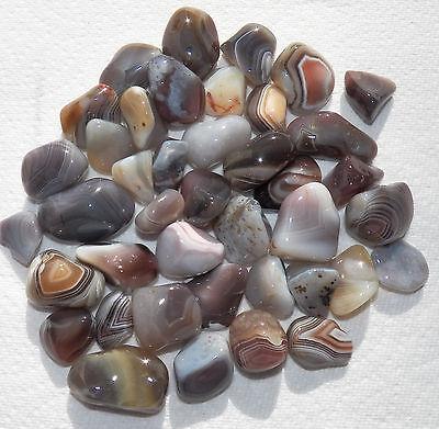 Beautiful GREY BOTSWANA AGATE Tumbled Stones Healing Jewelry Medium 1/2 lb
