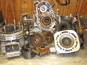 Polaris 400 Scrambler 1994 to 2003 Engine Motor REBUILD SERVICE I BUILD THEM ALL