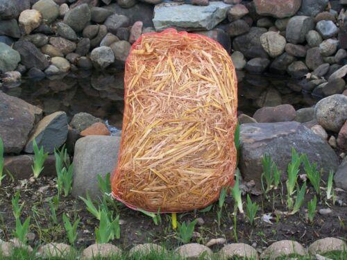 Barley Straw Organic 1/2 Pound in mesh bag